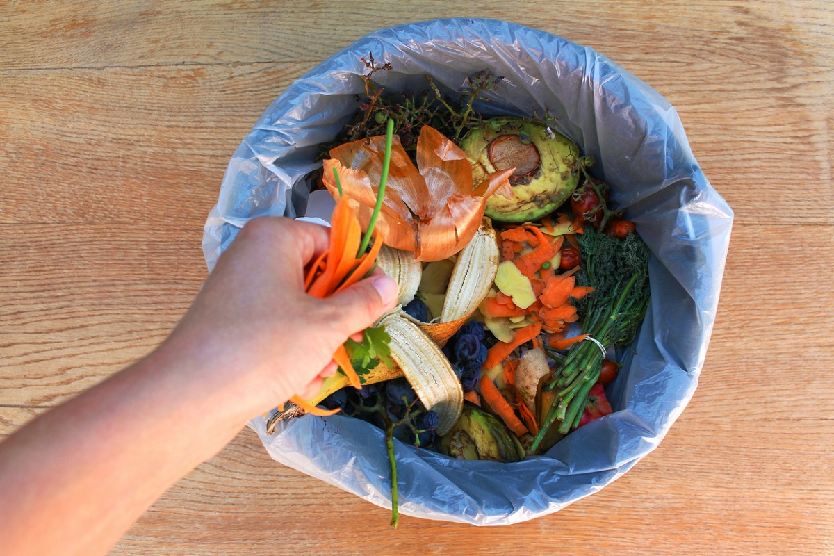 14% of Global Food Goes to Waste, FAO Reports