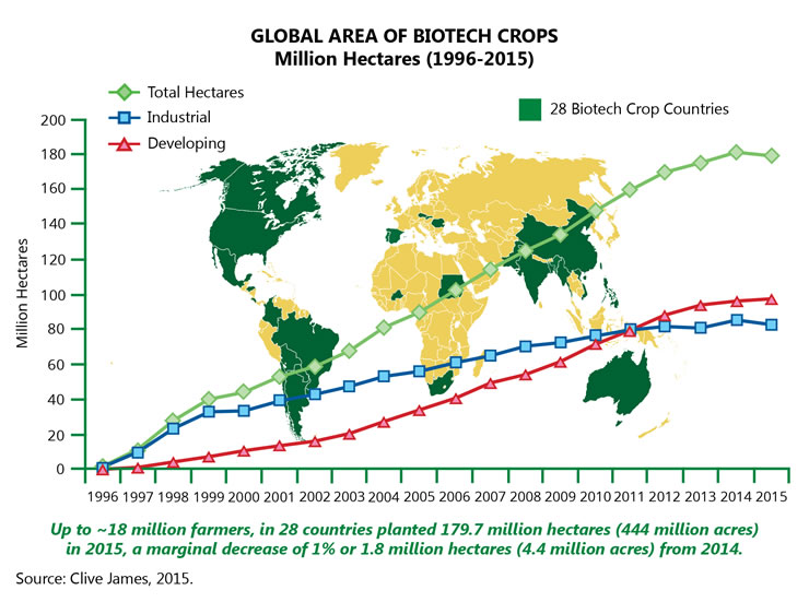 files ecodev biotech report