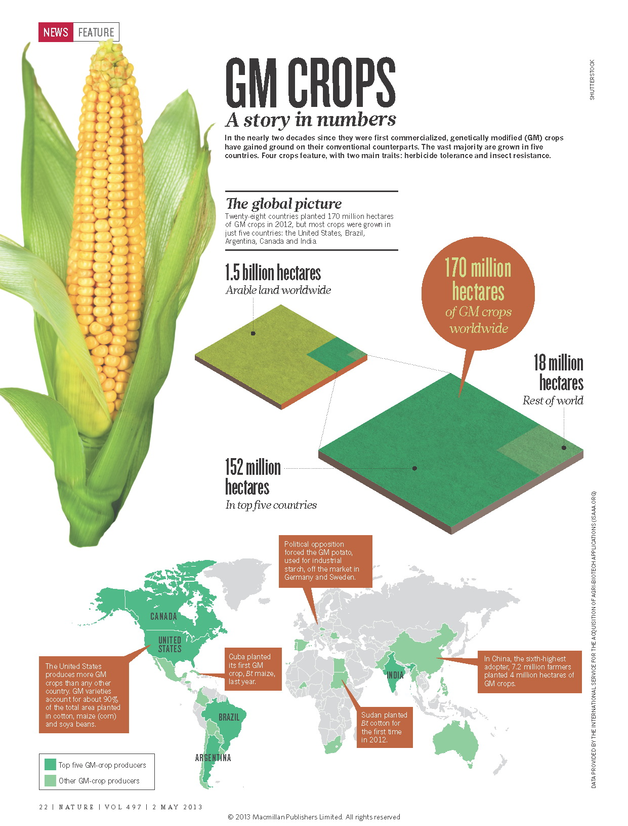 gm crops A genetically modified organism, or gmo, is an organism that has had its dna altered or modified in some way through genetic engineering in most cases, gmos have.