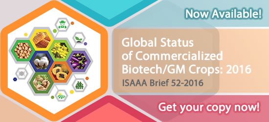 ISAAA Brief 52-2016 Now Available! Get Your Copy Now!