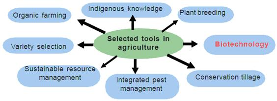 Contributions of Agricultural Biotechnology in Alleviation of