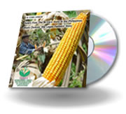 Watch the video: Asia's First: The Bt Corn Story in the Philippines